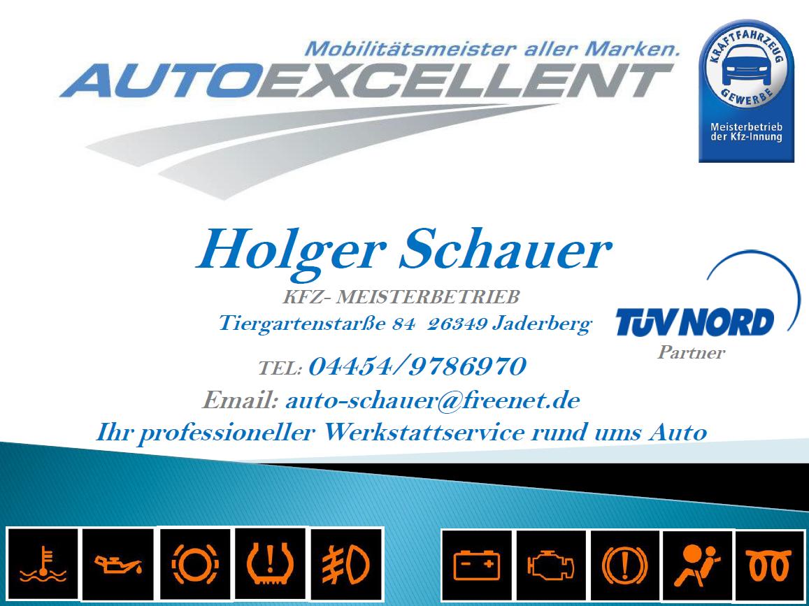 Holger Schauer Werbung